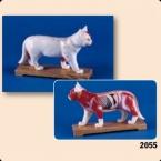Modelo felino de acupunctura