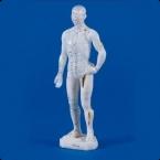 Figura masculina de acupunctura chinesa