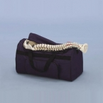 Mala arrumação modelos de coluna vertebral