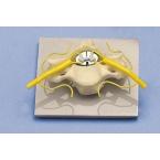 Vértebra c/secção da medula espinal