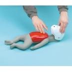 """Modelo de reanim. cardiopulmonar - Bebé - """"Buddy"""""""