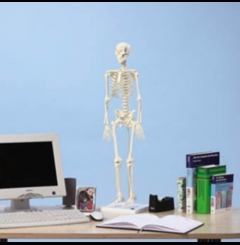 "Esqueleto ""Patrick"" - miniatura"