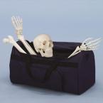 Saco de transporte p/ossos