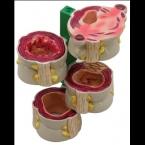 Modelo de 4 peças de cólon c/doenças