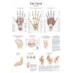 Quadro da mão (50 x 70)