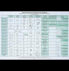 Quadro desenvolvimento psicomotor (82 X 60)