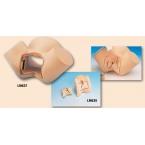Simulador da sutura da episiotomia