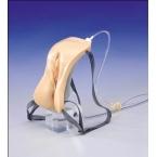 Modelo de cateterismo - feminino