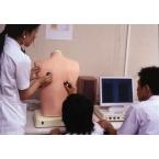Simulador de auscultação dos pulmões
